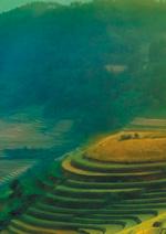 Jeux concours SAGA Cosmétiques : Gagnez 1 voyage en Chine sur la route du thé vert