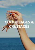 Catalogues et collections Gare SNCF : Prolongez encore un peu vos vacances d'été
