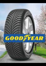 Bons Plans Feu Vert : 4 pneus achetés Vector 4 seasons = jusqu'à 100€ offerts