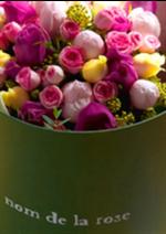 Catalogues et collections Au nom de la rose : Découvrez toutes les collections