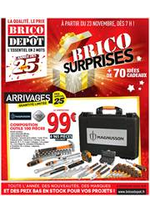 Prospectus  : Brico Surprises