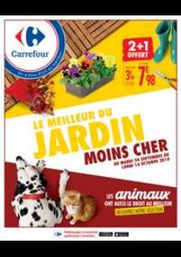 Prospectus Carrefour CHAMBOURCY : LE MEILLEUR DU JARDIN MOINS CHER