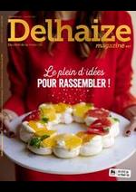 Prospectus Proxy Delhaize : Folder Delhaize