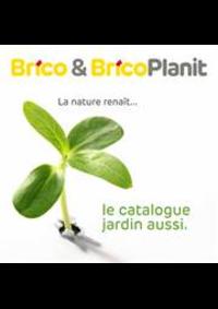 Prospectus Brico CHAMPION : Les actions