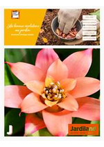 Prospectus Jardiland : Les bonnes résolutions au jardin