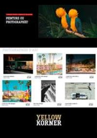 Prospectus Yellowkorner Paris Louvre  : Peinture ou Photographie ?