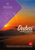 Promos et remises  : Dubaï Aux Mille Facettes